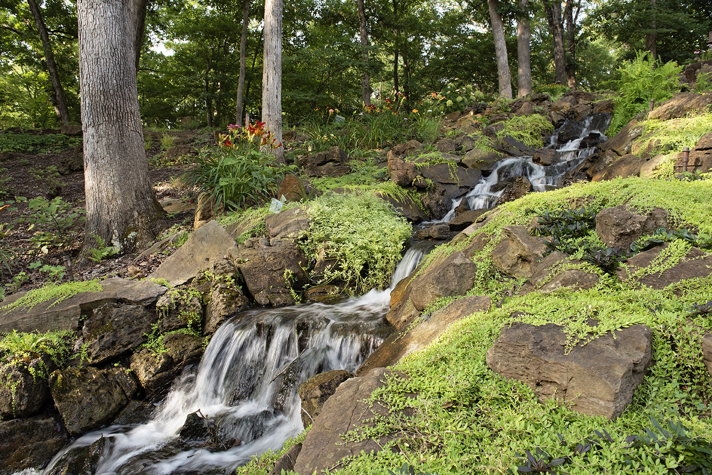 The Bauer brothers' lifelong passion for nature led them into an exclusive artistry designing and creating natural luxury waterfalls and koi ponds.